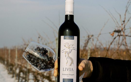 Livia- vinul care va indeamana la petrecere!